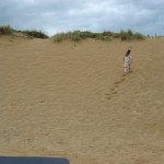 Echo runs away along sand dunes (on cutting room floor) 03