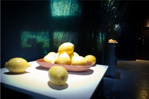 Fruit bowl from entrance (walkway) to installation